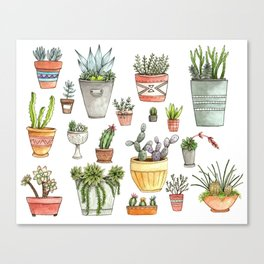 Potted Succulents Canvas Print
