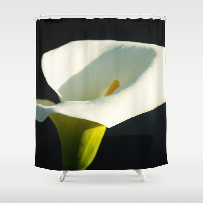 Charmant Calla Lily Shower Curtain