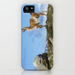A Guanaco, in Patagonia, Chile. iPhone Case