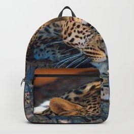 BIG CATS Backpack