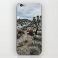 Mojave iPhone & iPod Skin
