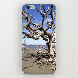 Driftwood Beach iPhone Skin