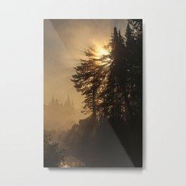 morning glory Metal Print