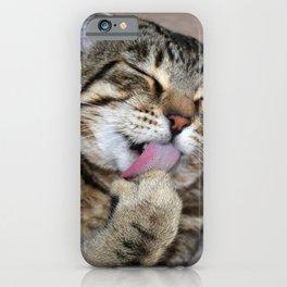 Mr Handsome Grooming Tomcat iPhone Case