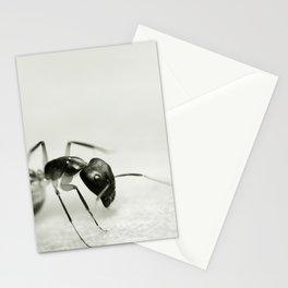 Drunken Ant Stationery Cards