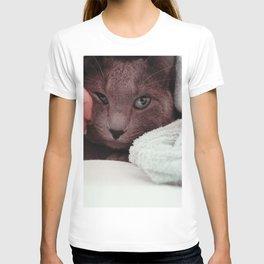 Cat by Giovanna Karla (givi) T-shirt