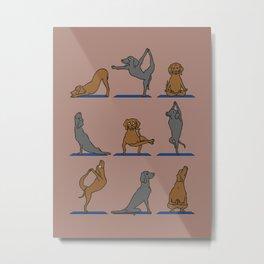 Vizsla Yoga Metal Print