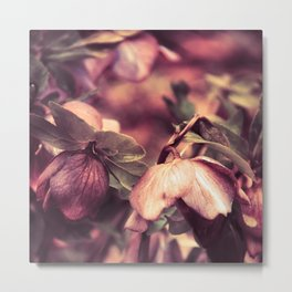 SPRING  'S COMING SOON vol.2 Metal Print
