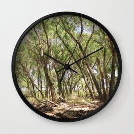 San Pedro River Bank Wall Clock