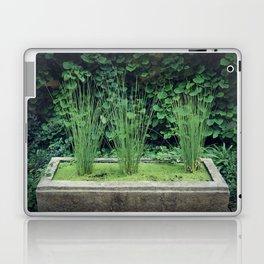Water Grass Laptop & iPad Skin