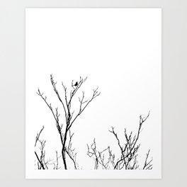 LITTLE BIRD LIGHT Art Print