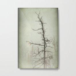Dead Wood Metal Print