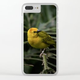 Golden Weaver 3 Clear iPhone Case