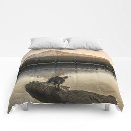 The Oregon Duck II - The Shake Comforters