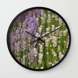Lavender & White Lavender Wall Clock