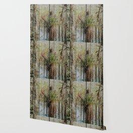 Unexpected Beauty Wallpaper