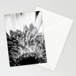 Gerbera Stationery Cards