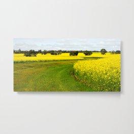 Canola Fields, Western Australia Metal Print