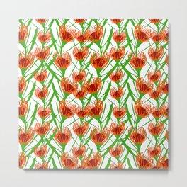 Pincushion Floral Print - Australian Floral Print Metal Print