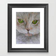 Green Eyed Purr Framed Art Print