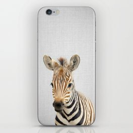 Baby Zebra - Colorful iPhone Skin