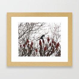 Lonely Winter Framed Art Print