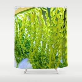 Palm Leaves Art Shower Curtain