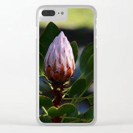 Sugarbush - Protea Clear iPhone Case