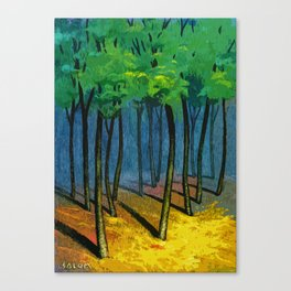 Sunset light in the forest Canvas Print