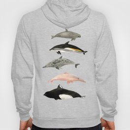 Dolphins and porpoises Hoody