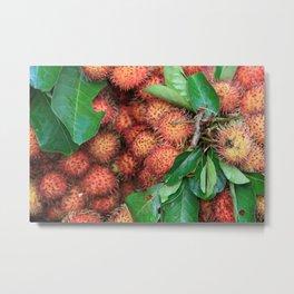 Rambutan Fruits background Metal Print