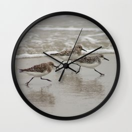 Sandpipers Wall Clock
