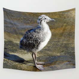 Ring-billed Gull Chick Wall Tapestry