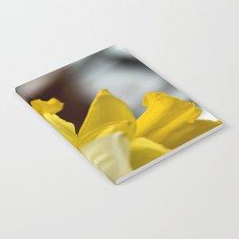 Vibrant Daffodils Notebook