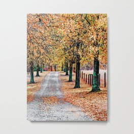 Colorful Autumn Drive Metal Print