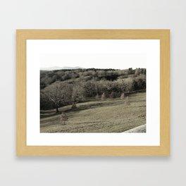 Biltmore Estate Landscape Black and White Framed Art Print