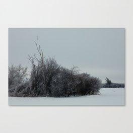 2013 Ice Storm 2 Canvas Print