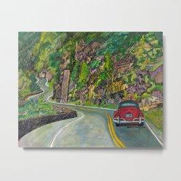 Smoky Mountain Road Bug Metal Print
