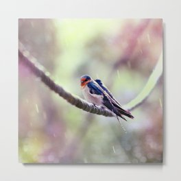 Welcome Swallows Metal Print
