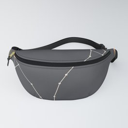 PISCES (MID-CENTURY MODERN) Fanny Pack