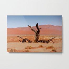 NAMIBIA ... Namib Desert Tree Metal Print