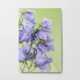 Tree frog in purple flowers Metal Print