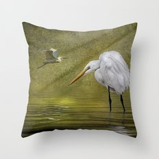 Everglades Evening Throw Pillow