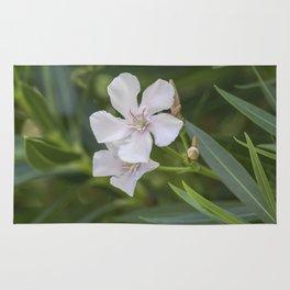 white oleander in the garden Rug