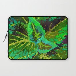 Green Coleus Ornamental Plant - Botanical Art Illustration Laptop Sleeve