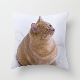 Kitten Discovers Snow! Throw Pillow