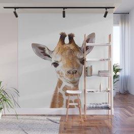 Baby Giraffe, Baby Animal Art Prints By Synplus Wall Mural