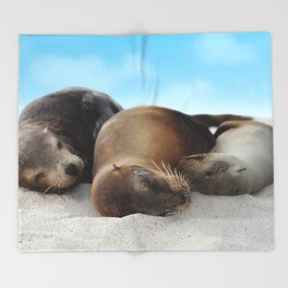 Sea lions family sleeping together on beach Throw Blanket