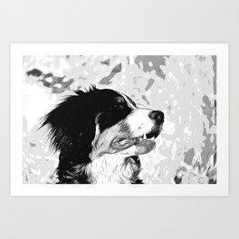 bernese mountain dog vector art black white Art Print