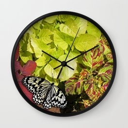 Black and White Butterfly Wall Clock